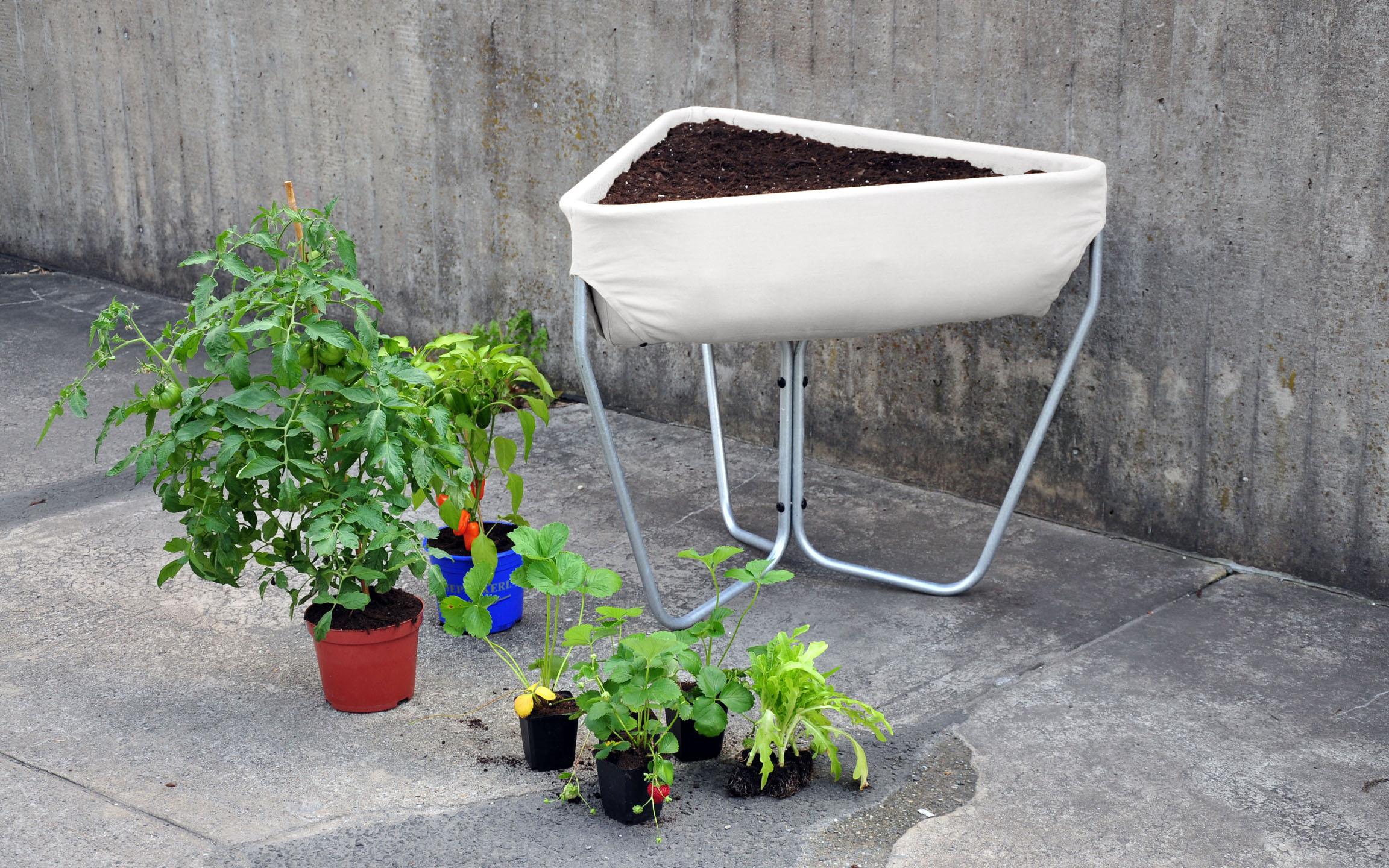 hochbeet-drebes-oertel-plants