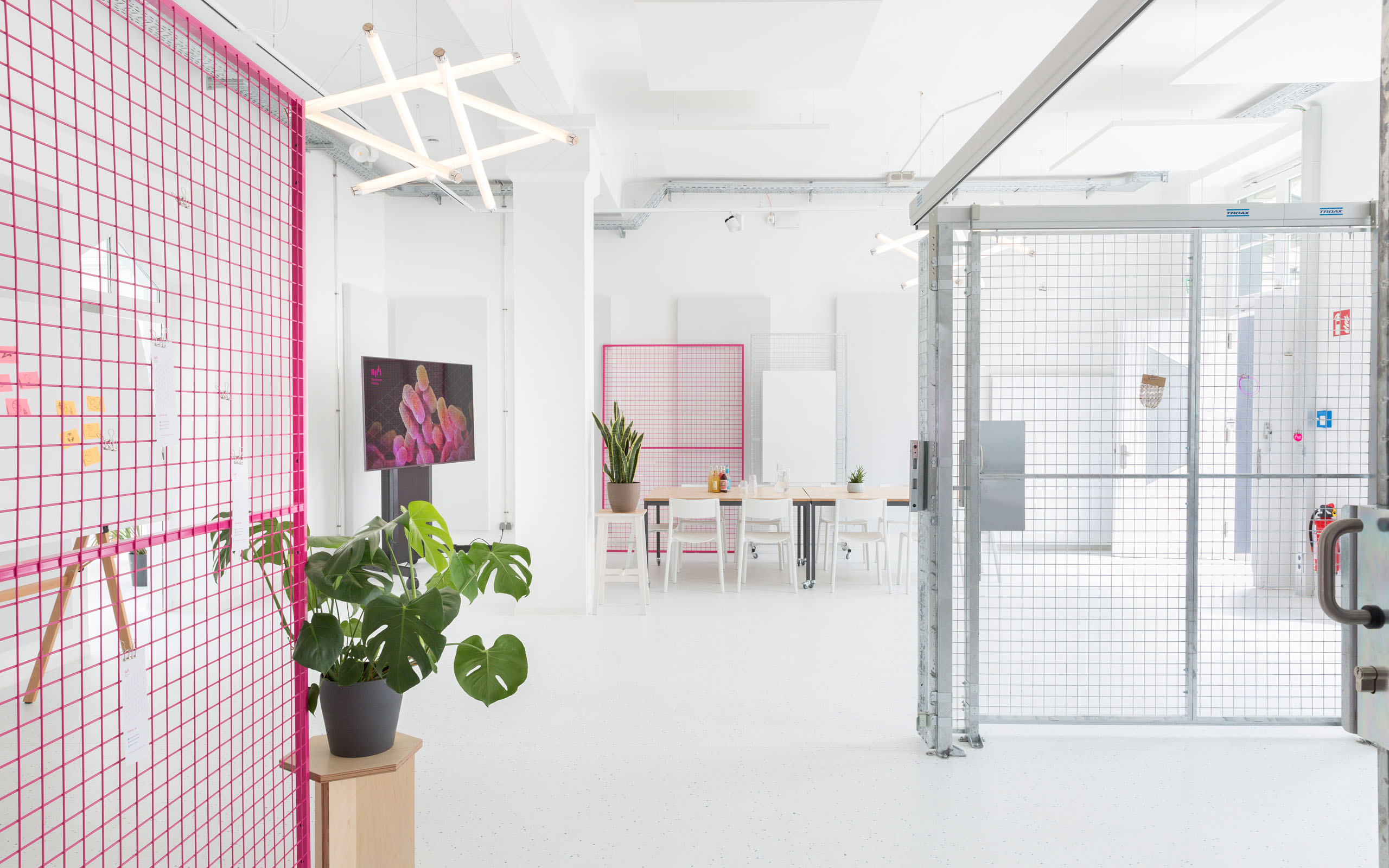 The interior of a lab working space with poppy colored grids in pink.